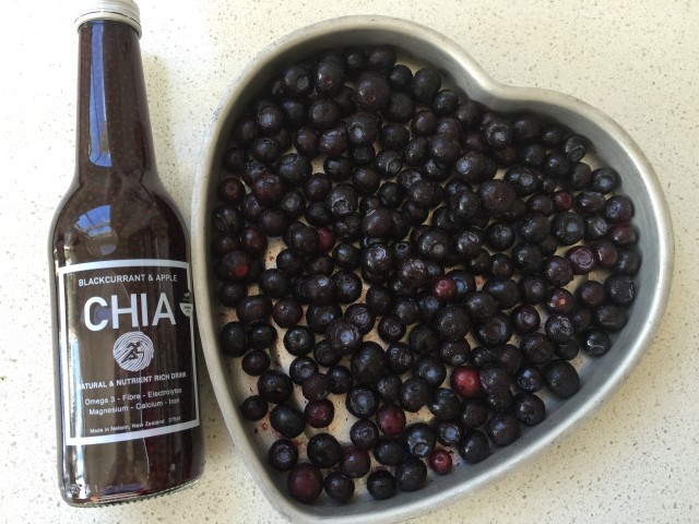 chia and blueberries